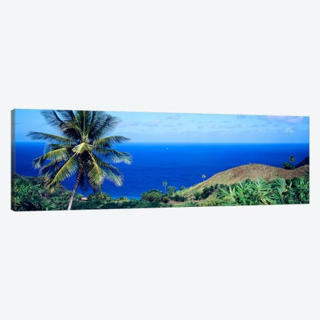 Pigeon Point Tobago Canvas Print #PIM816} by Panoramic Images Canvas Artwork
