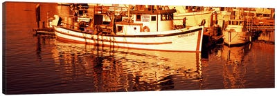 Fishing boats in the bay, Morro Bay, San Luis Obispo County, California, USA Canvas Print #PIM8181