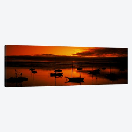 Boats in a bay, Morro Bay, San Luis Obispo County, California, USA Canvas Print #PIM8187} by Panoramic Images Canvas Print