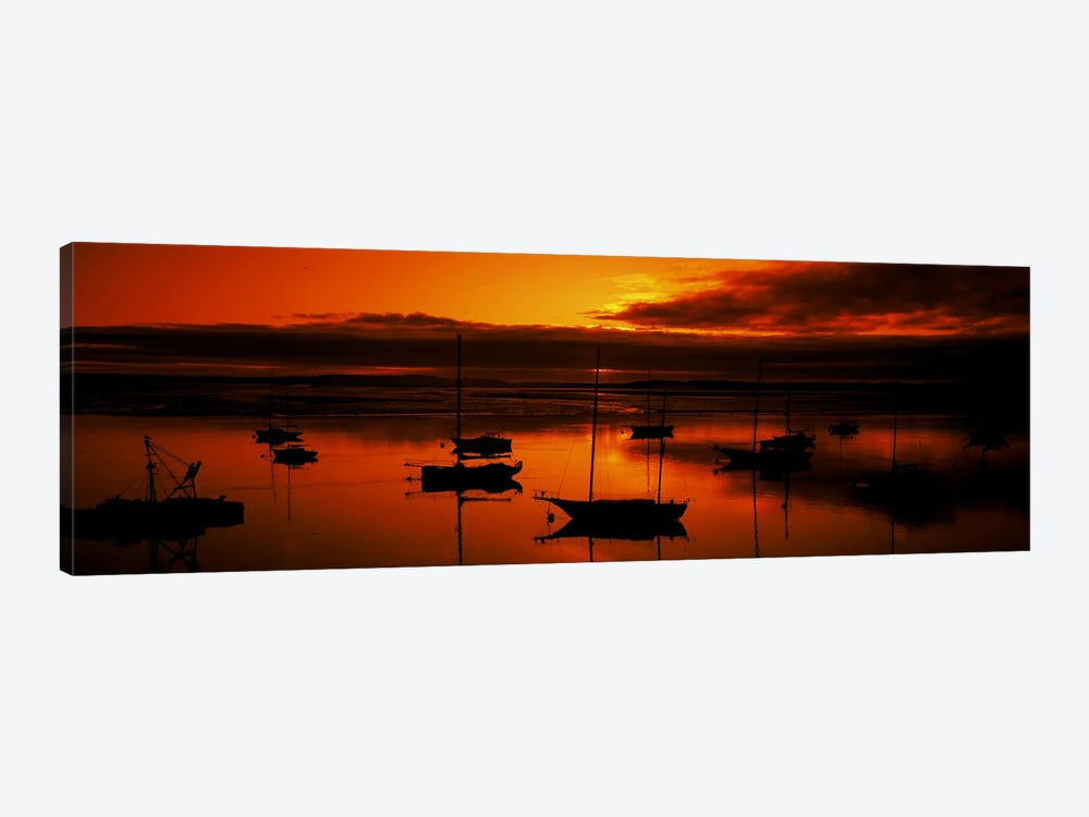 Boats in a bay, Morro Bay, San Luis Obispo County, California, USA by Panoramic Images 1-piece Canvas Art Print