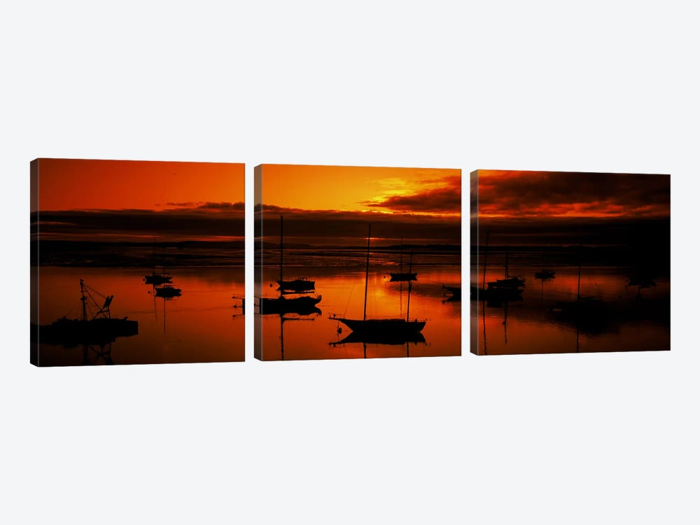 Boats in a bay, Morro Bay, San Luis Obispo County, California, USA by Panoramic Images 3-piece Canvas Print