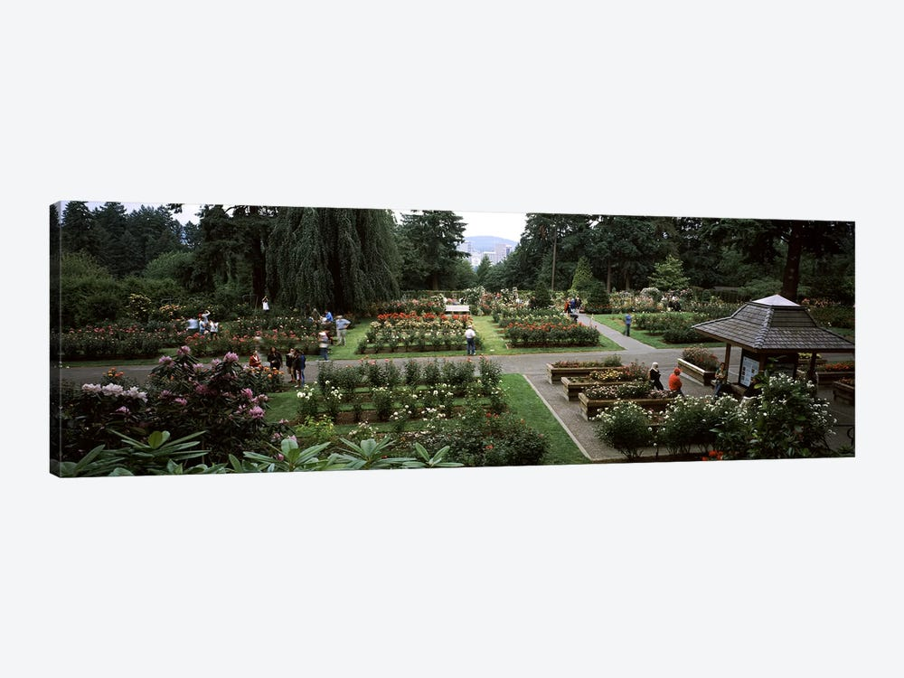 Tourists in a rose garden, International Rose Test Garden, Washington Park, Portland, Multnomah County, Oregon, USA by Panoramic Images 1-piece Canvas Wall Art