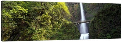 Waterfall in a forest, Multnomah Falls, Columbia River Gorge, Portland, Multnomah County, Oregon, USA Canvas Art Print