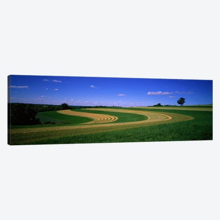 Farmland IL USA Canvas Print #PIM824} by Panoramic Images Canvas Print