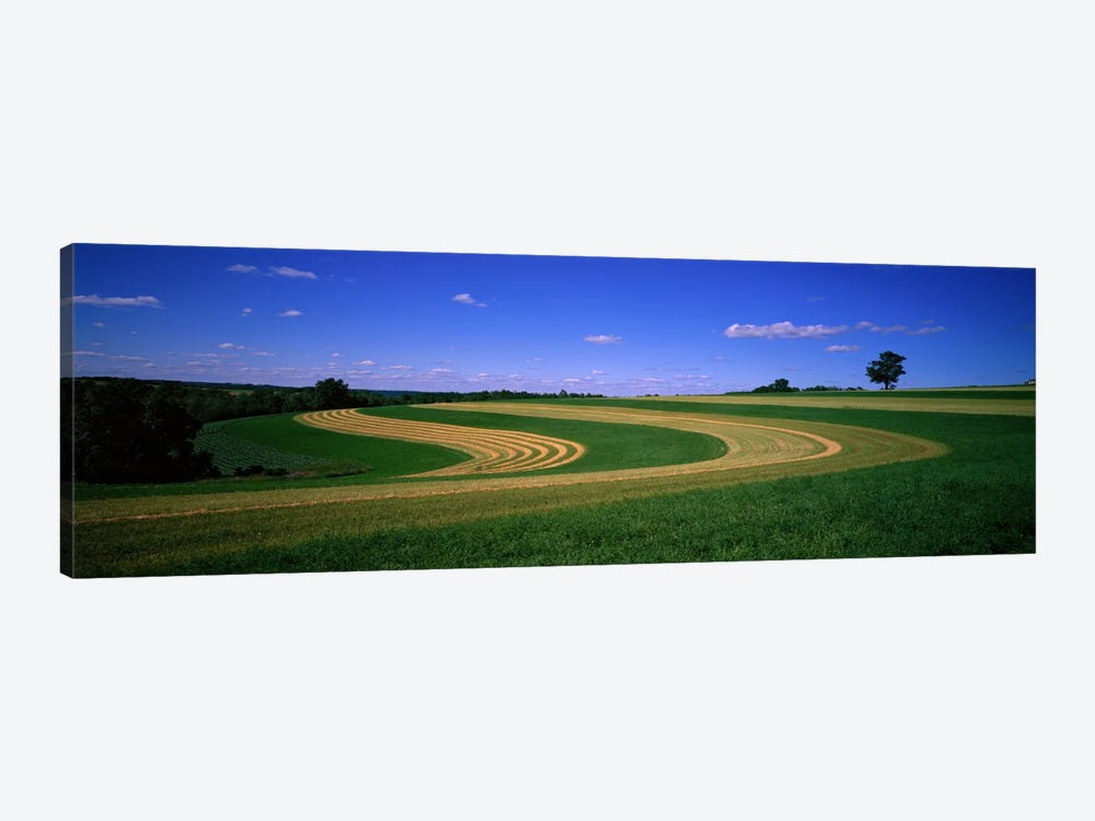 Farmland IL USA by Panoramic Images 1-piece Canvas Art Print