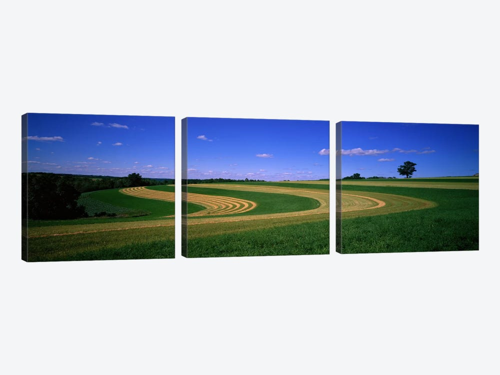 Farmland IL USA by Panoramic Images 3-piece Canvas Art Print