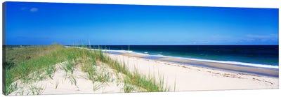 Coastal Landscape, Cape Hatteras National Seashore, Outer Banks, North Carolina USA Canvas Print #PIM856