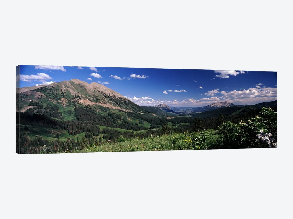 Kebler Pass, Crested Butte, Gunnison County, Colorado, USA by Panoramic Images 1-piece Canvas Art