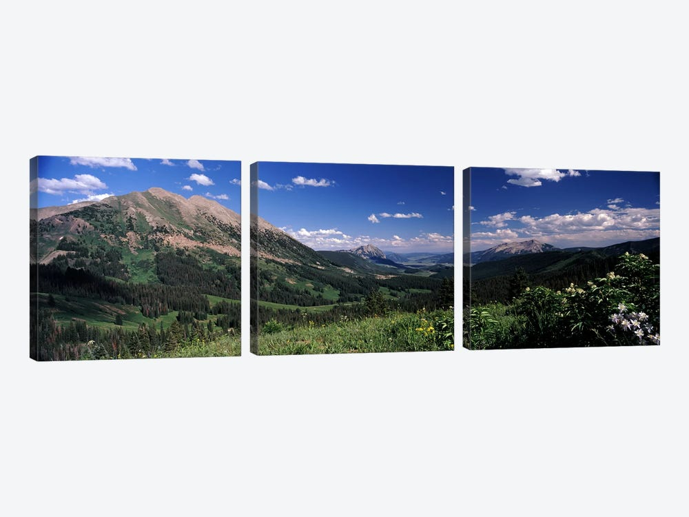 Kebler Pass, Crested Butte, Gunnison County, Colorado, USA by Panoramic Images 3-piece Canvas Art