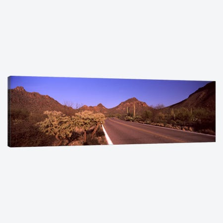 Road passing through a landscape, Saguaro National Park, Tucson, Pima County, Arizona, USA #2 Canvas Print #PIM8648} by Panoramic Images Canvas Print