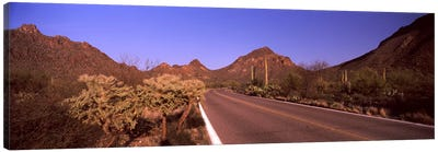 Road passing through a landscape, Saguaro National Park, Tucson, Pima County, Arizona, USA #2 Canvas Art Print
