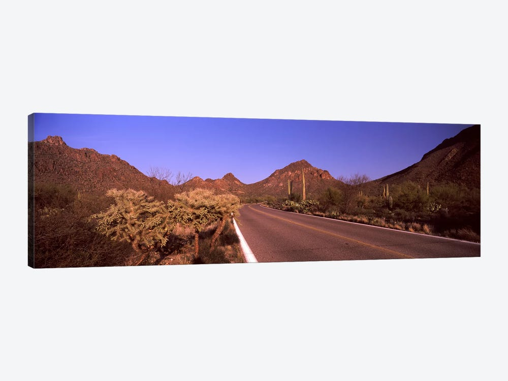 Road passing through a landscape, Saguaro National Park, Tucson, Pima County, Arizona, USA #2 by Panoramic Images 1-piece Canvas Art Print
