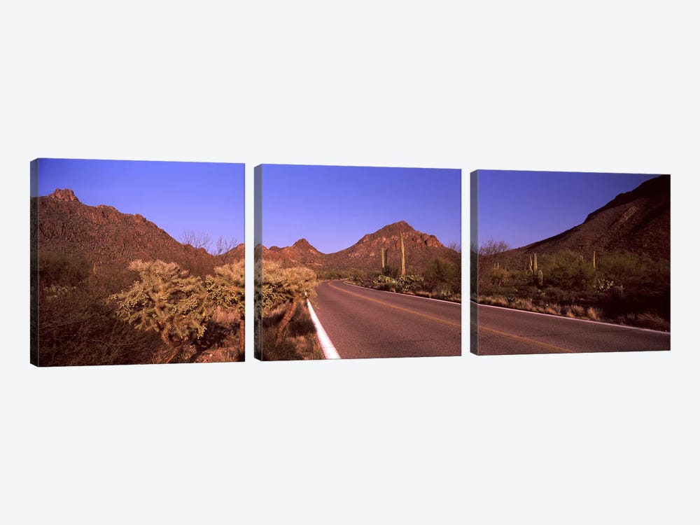 Road passing through a landscape, Saguaro National Park, Tucson, Pima County, Arizona, USA #2 by Panoramic Images 3-piece Canvas Art Print