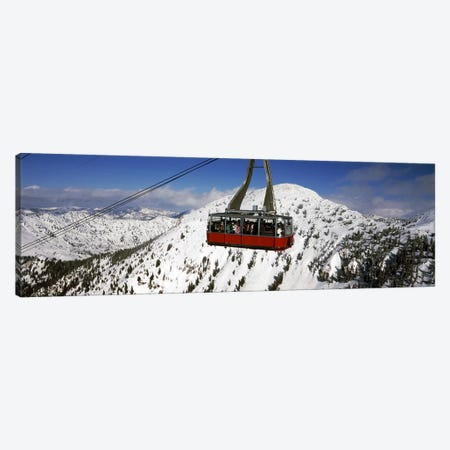 Overhead cable car in a ski resortSnowbird Ski Resort, Utah, USA Canvas Print #PIM8688} by Panoramic Images Canvas Print