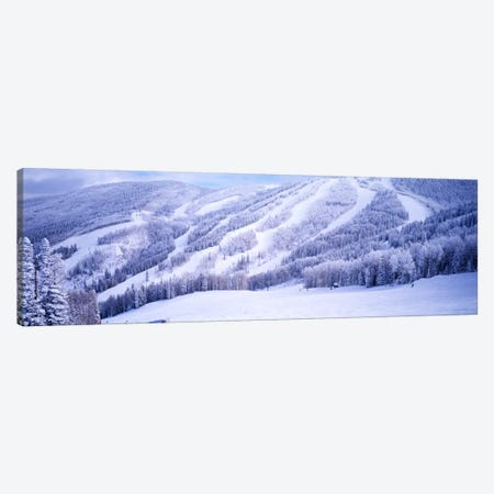 Snow-Covered Ski Slopes, Steamboat Springs, Colorado, USA Canvas Print #PIM871} by Panoramic Images Canvas Art Print
