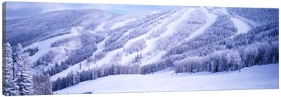 Snow-Covered Ski Slopes, Steamboat Springs, Colorado, USA Canvas Print #PIM871