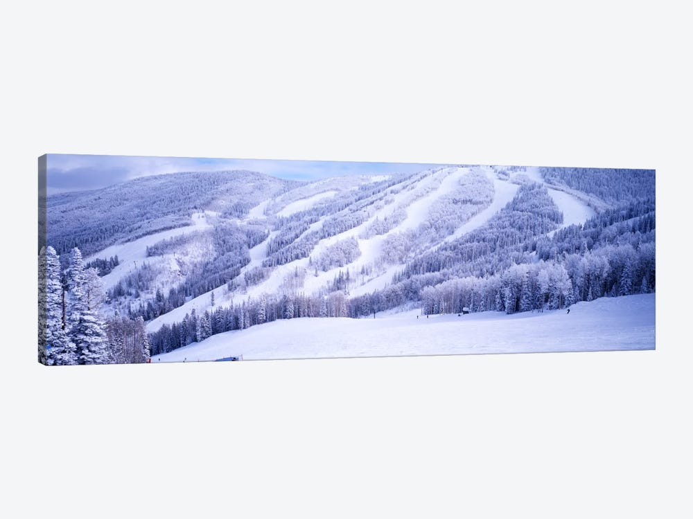 Snow-Covered Ski Slopes, Steamboat Springs, Colorado, USA by Panoramic Images 1-piece Canvas Print