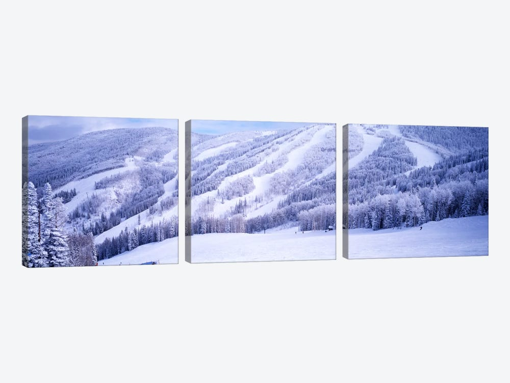 Snow-Covered Ski Slopes, Steamboat Springs, Colorado, USA 3-piece Canvas Print