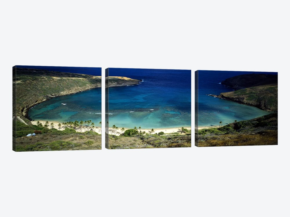 High angle view of a coast, Hanauma Bay, Oahu, Honolulu County, Hawaii, USA by Panoramic Images 3-piece Canvas Print