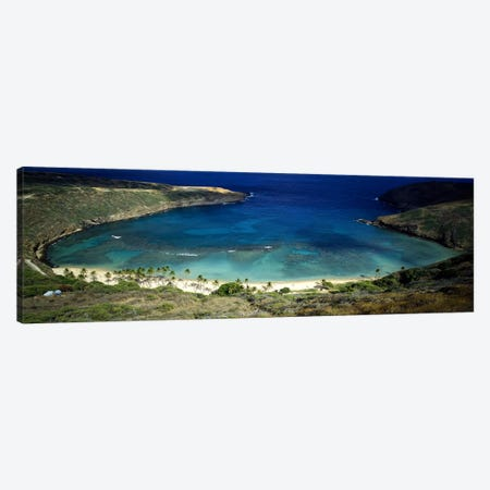 High angle view of a coast, Hanauma Bay, Oahu, Honolulu County, Hawaii, USA Canvas Print #PIM8856} by Panoramic Images Canvas Art Print