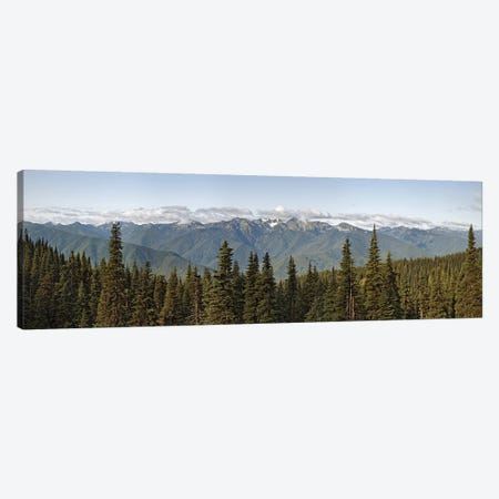Mountain range, Olympic Mountains, Hurricane Ridge, Olympic National Park, Washington State, USA Canvas Print #PIM9016} by Panoramic Images Canvas Artwork