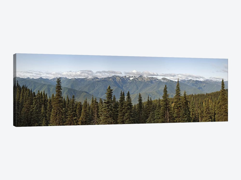 Mountain range, Olympic Mountains, Hurricane Ridge, Olympic National Park, Washington State, USA by Panoramic Images 1-piece Canvas Art