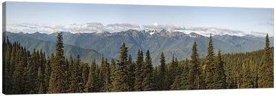 Mountain range, Olympic Mountains, Hurricane Ridge, Olympic National Park, Washington State, USA Canvas Art Print