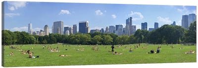 Tourists resting in a parkSheep Meadow, Central Park, Manhattan, New York City, New York State, USA Canvas Print #PIM9021