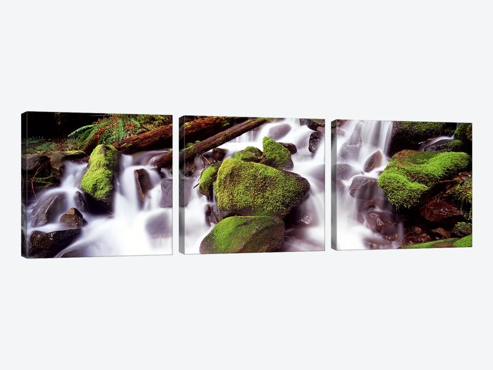Cascading waterfall in a rainforestOlympic National Park, Washington State, USA 3-piece Canvas Artwork