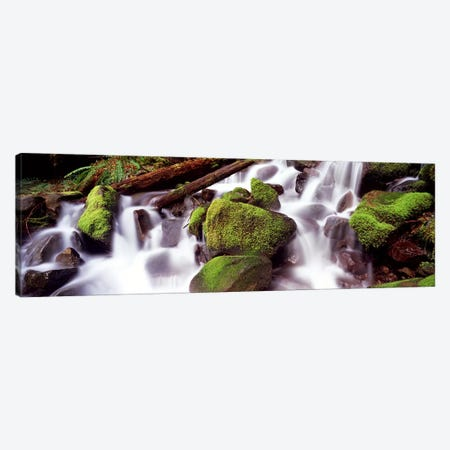 Cascading waterfall in a rainforestOlympic National Park, Washington State, USA 3-Piece Canvas #PIM9032} by Panoramic Images Canvas Art Print