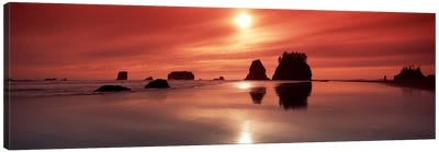 Silhouette of sea stacks at sunsetSecond Beach, Olympic National Park, Washington State, USA Canvas Art Print