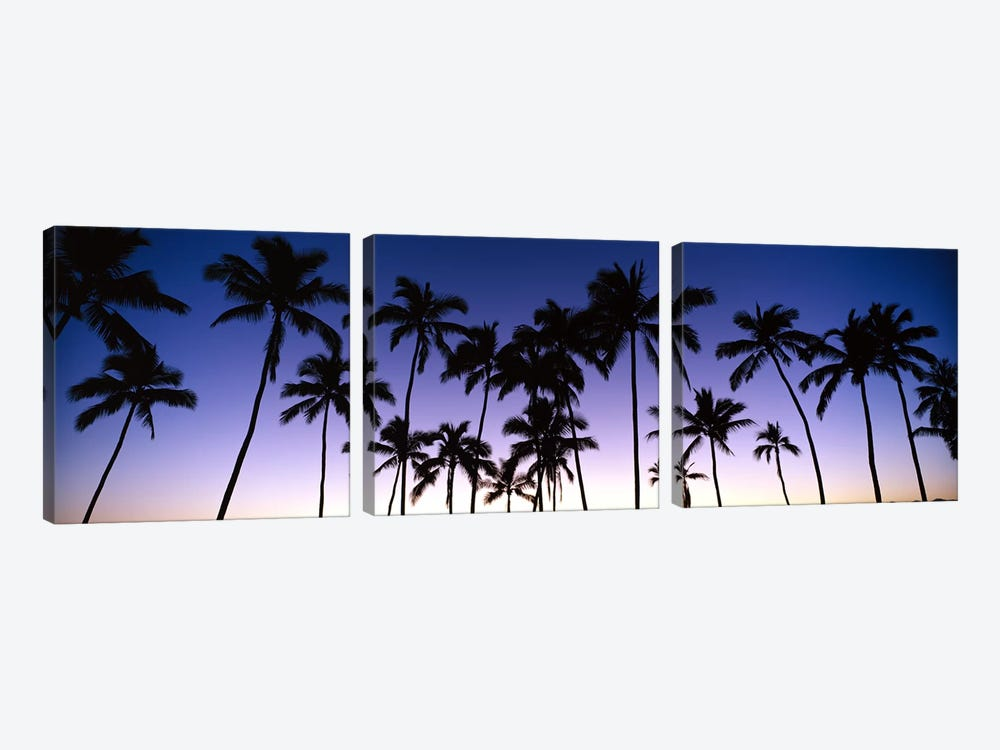 Silhouettes of palm trees at sunset 3-piece Canvas Print