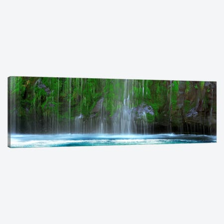 Waterfall in a forestMossbrae Falls, Sacramento River, Dunsmuir, Siskiyou County, California, USA Canvas Print #PIM9052} by Panoramic Images Art Print