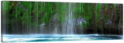 Waterfall in a forestMossbrae Falls, Sacramento River, Dunsmuir, Siskiyou County, California, USA Canvas Art Print