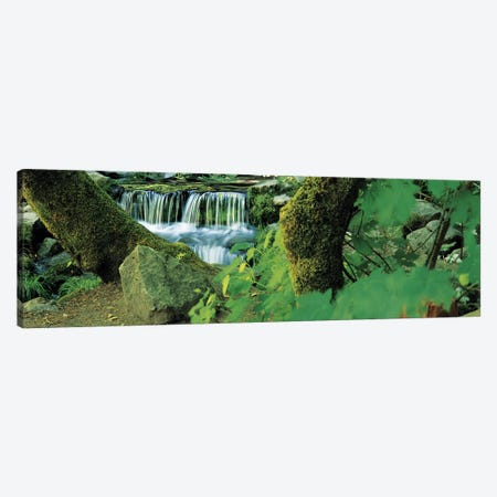 Waterfall in a forest Canvas Print #PIM9071} by Panoramic Images Art Print