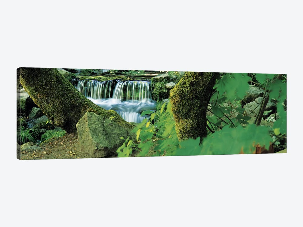 Waterfall in a forest by Panoramic Images 1-piece Canvas Art Print