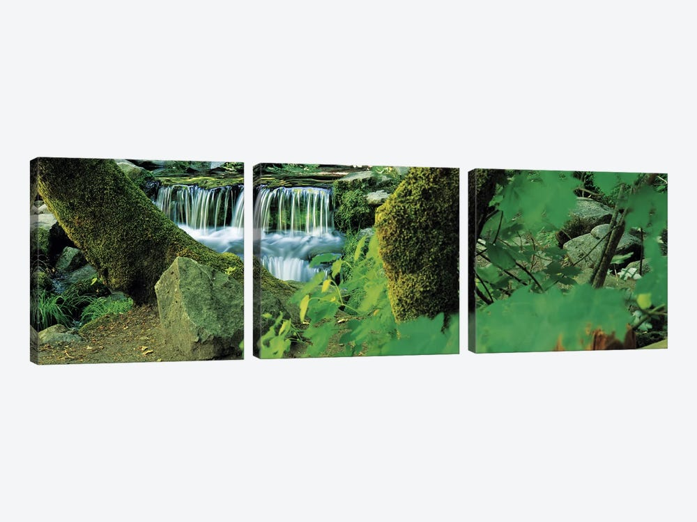 Waterfall in a forest by Panoramic Images 3-piece Canvas Print