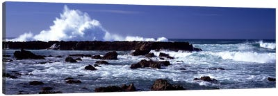 Waves breaking on the coast Canvas Print #PIM9083