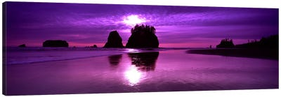Silhouette of sea stacks at sunset, Second Beach, Olympic National Park, Washington State, USA Canvas Art Print