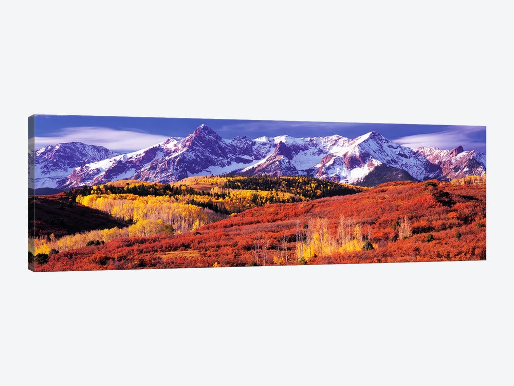 Autumn Mountainside Landscape Featuring Sneffels Range, San Miguel County, Colorado, USA by Panoramic Images 1-piece Canvas Art