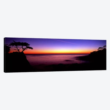 Silhouette of Lone Cypress Tree on a cliff17-Mile Drive, Pebble Beach, Carmel, Monterey County, California, USA Canvas Print #PIM9098} by Panoramic Images Art Print