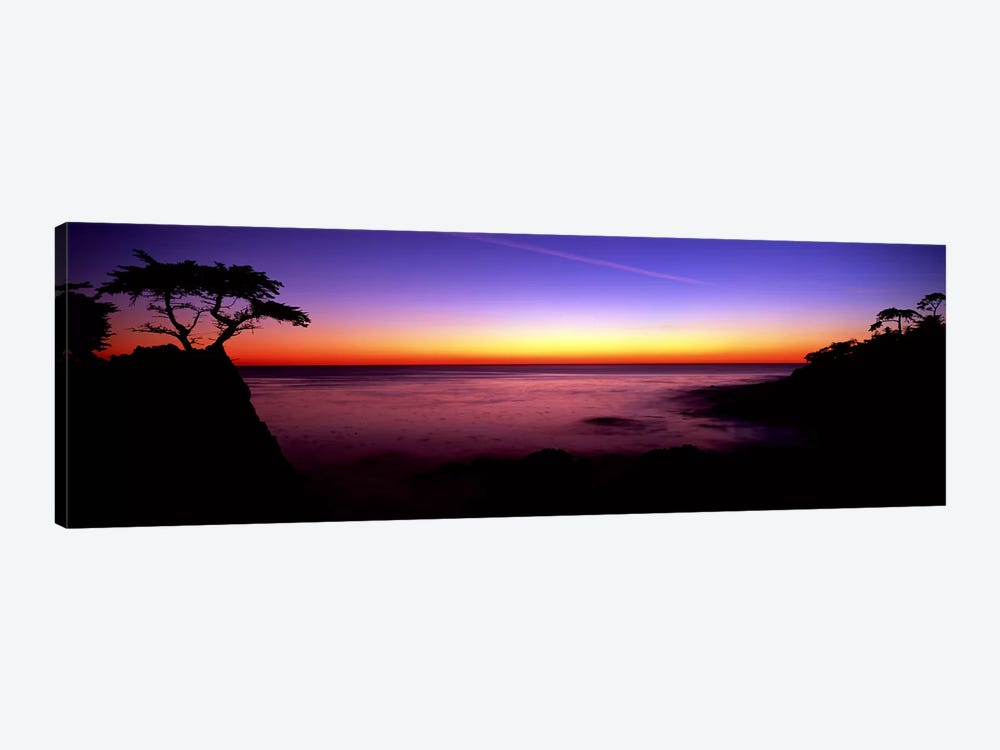 Silhouette of Lone Cypress Tree on a cliff17-Mile Drive, Pebble Beach, Carmel, Monterey County, California, USA by Panoramic Images 1-piece Canvas Art
