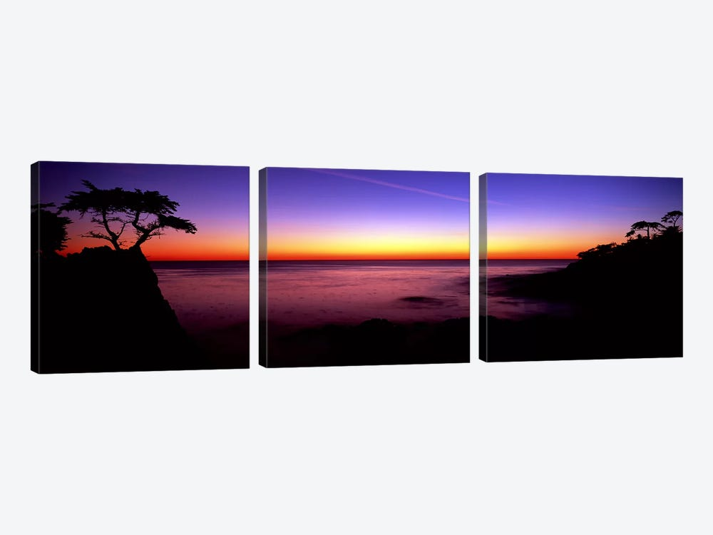Silhouette of Lone Cypress Tree on a cliff17-Mile Drive, Pebble Beach, Carmel, Monterey County, California, USA by Panoramic Images 3-piece Canvas Art