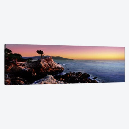 Silhouette of Lone Cypress Tree at a coast17-Mile Drive, Carmel, Monterey County, California, USA Canvas Print #PIM9121} by Panoramic Images Art Print