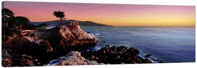 Silhouette of Lone Cypress Tree at a coast17-Mile Drive, Carmel, Monterey County, California, USA Canvas Art Print