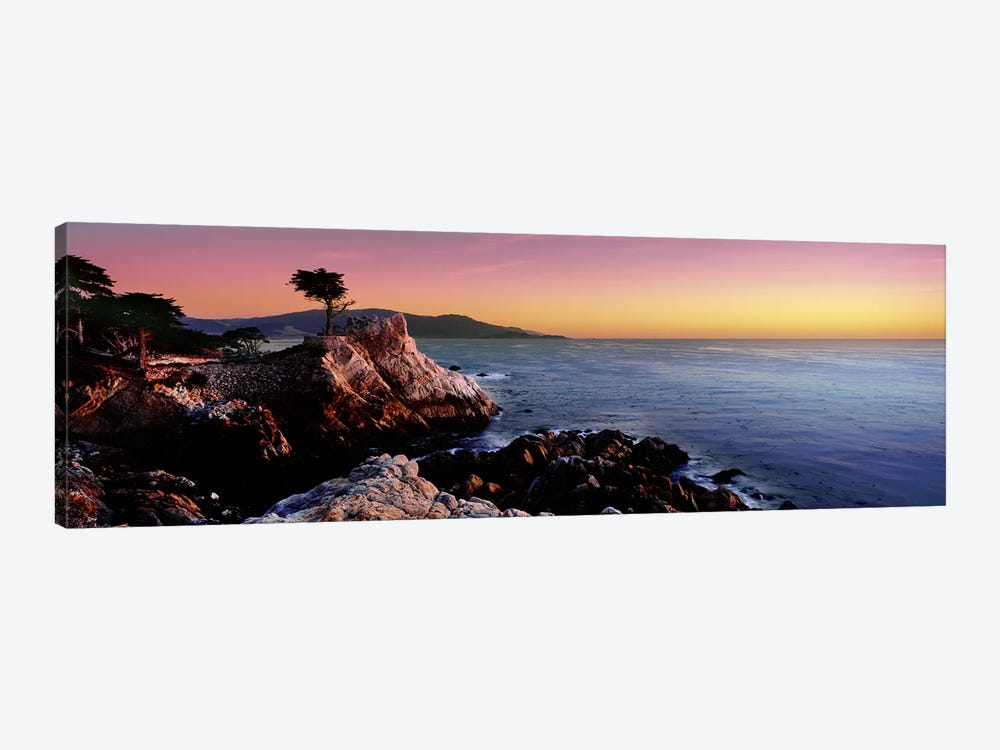 Silhouette of Lone Cypress Tree at a coast17-Mile Drive, Carmel, Monterey County, California, USA by Panoramic Images 1-piece Canvas Art Print