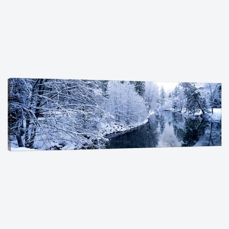 Snow covered trees along a river, Yosemite National Park, California, USA #2 Canvas Print #PIM9130} by Panoramic Images Canvas Wall Art