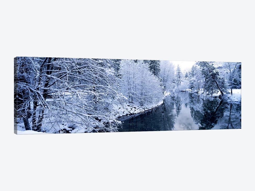 Snow covered trees along a river, Yosemite National Park, California, USA #2 by Panoramic Images 1-piece Canvas Print