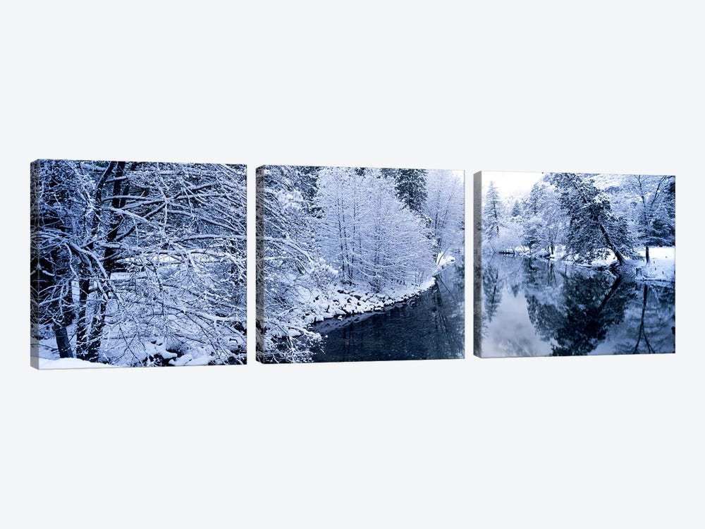 Snow covered trees along a river, Yosemite National Park, California, USA #2 by Panoramic Images 3-piece Canvas Art Print