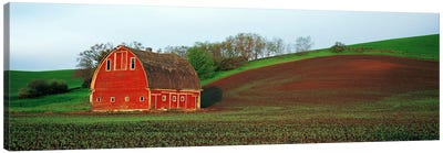 Barn in a field at sunset, Palouse, Whitman County, Washington State, USA #5 Canvas Art Print